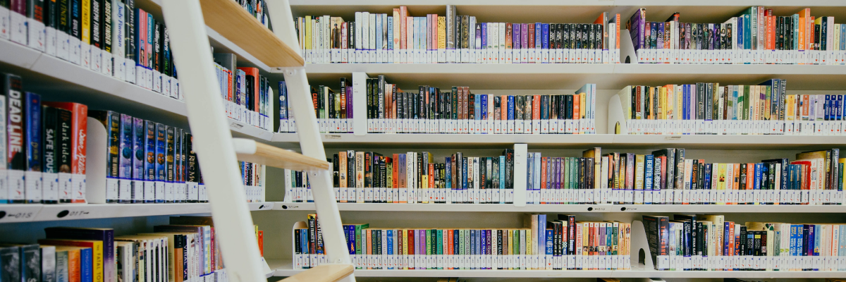 Header image for 'BookBucket: your personal bookshelf on which you keep discovering new books'. Photo by chuttersnap on Unsplash.